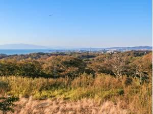 神奈川県三浦市三崎町小網代の土地