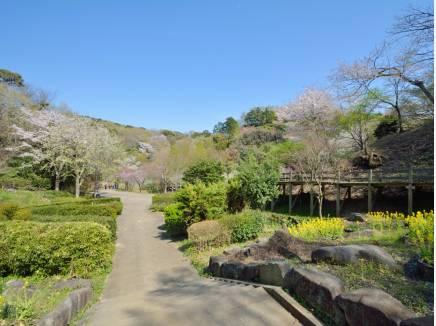 自然豊かな鎌倉中央公園まで徒歩6分(約450m)