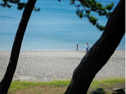 一色海岸まで徒歩3分(約240m)