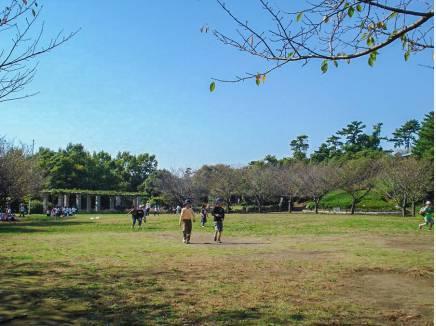 四季折々の自然を楽しめる長久保公園まで徒歩6分(約450m)
