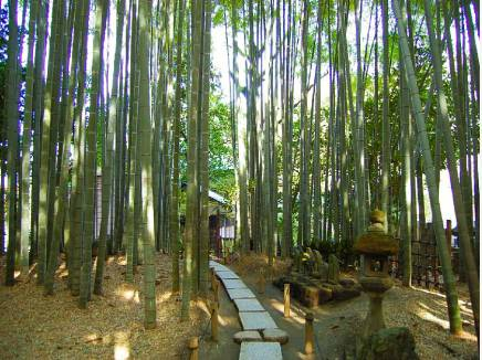 美しい竹林を楽しめる 報国寺まで徒歩9分(約650m)