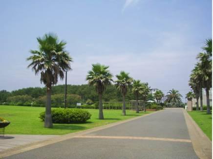辻堂海浜公園まで徒歩18分(約1400m)