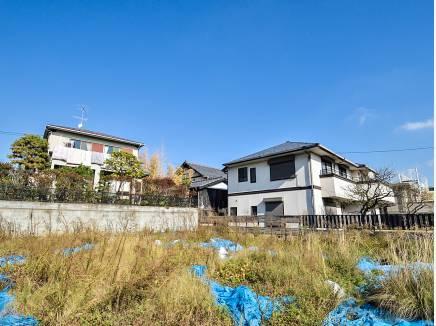 広い敷地にどんな邸宅を建てましょうか・・・