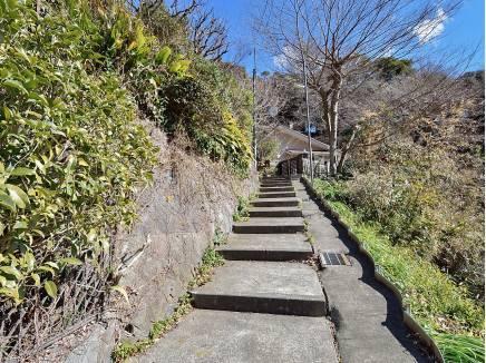 現地へ向かう階段も開放的