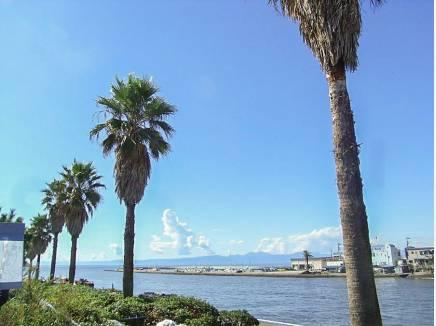 湘南の風を感じながらの生活が叶います(海まで徒歩1分 70m)