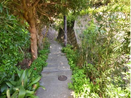 この道を上ればご褒美のような素敵な眺望が待っていますよ