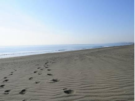 海岸まで徒歩7分(約500m)