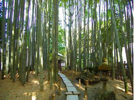 報国寺まで徒歩8分(約570m)