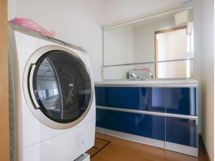 ゆとりの広さの洗面室