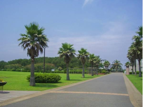 辻堂海浜公園まで徒歩14分 (約1100m)