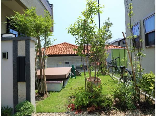 緑に彩られた素敵なお庭