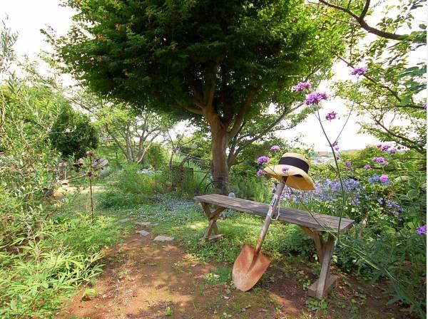 お庭のシンボルツリーをそのまま残してもいいです。