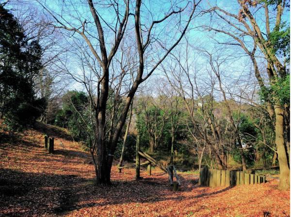 小糸台公園まで徒歩7分(約500m)