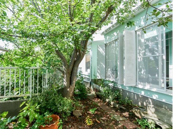 緑に彩られたお庭は癒しのスペースです。