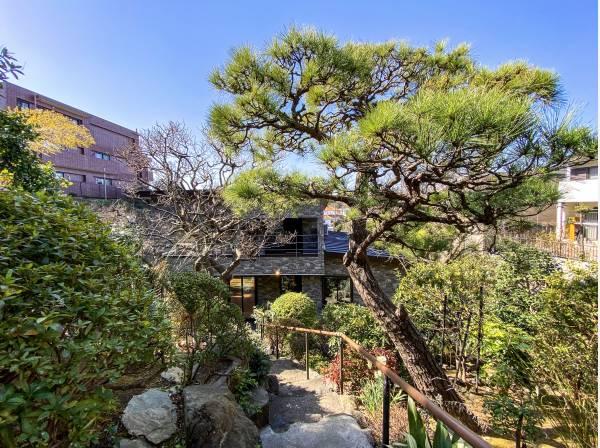 植栽豊かな庭園を抜けると重厚感のあるシックな建物が見えてきます