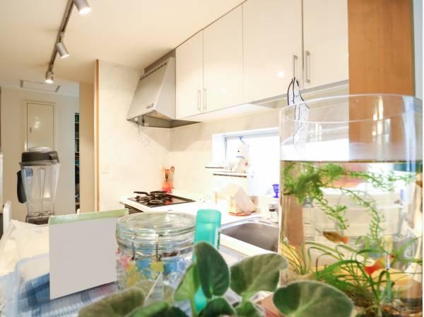 キッチン奥には大容量のパントリーや床下収納などが付いています