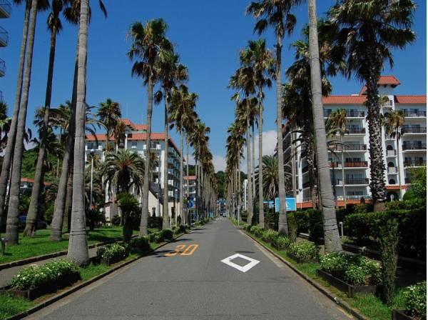 美しい街並みが広がる逗子マリーナまでドライブしませんか(約2500m)