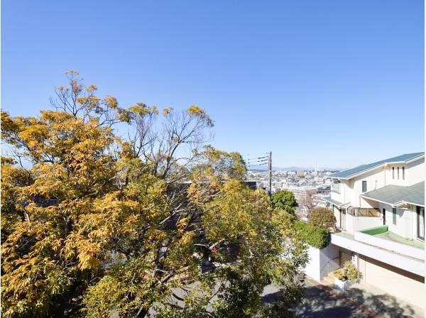 神奈川県藤沢市片瀬山1丁目の土地