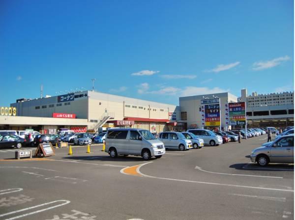 お買い物に便利鎌倉大船モールまで徒歩5分(約350m)