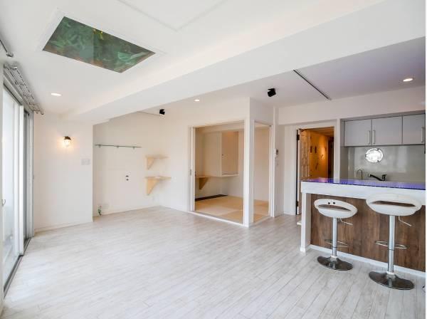 天井には緑、造作の棚もお洒落です