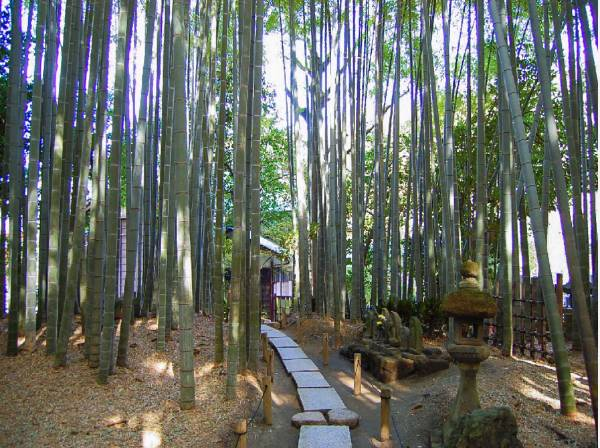 報告寺まで徒歩15分(約1200m)