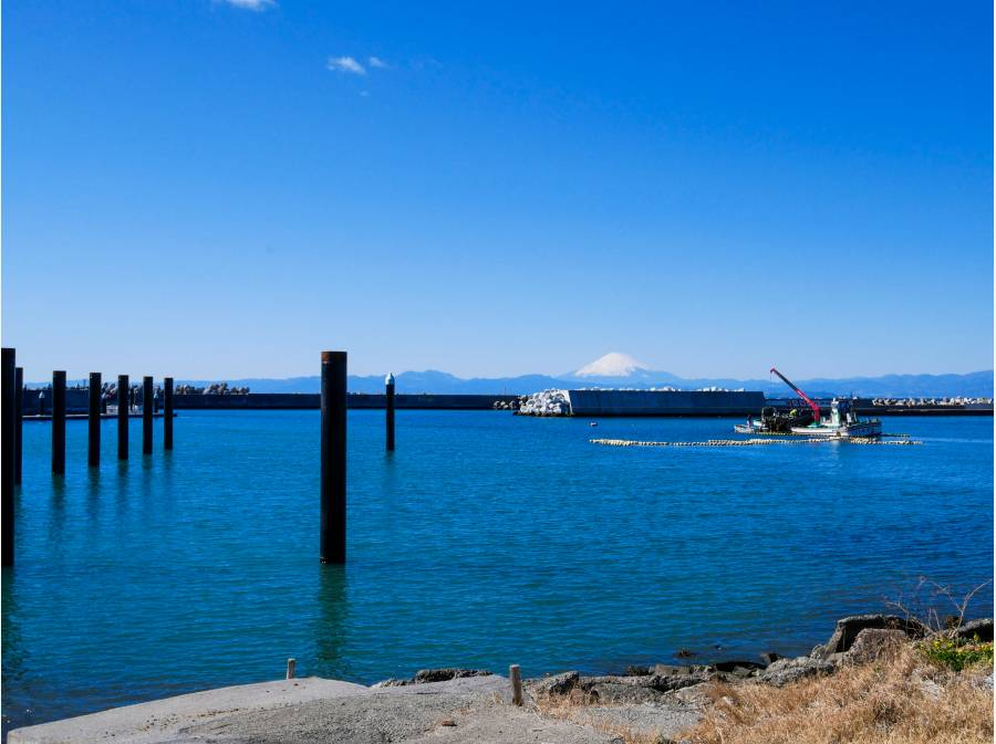 ブルーの景色と真っ白な富士のコントラストがなんとも印象的ですね