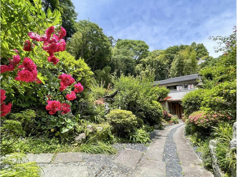 玄関までの長いアプローチには四季折々の植栽が美しく咲いていました